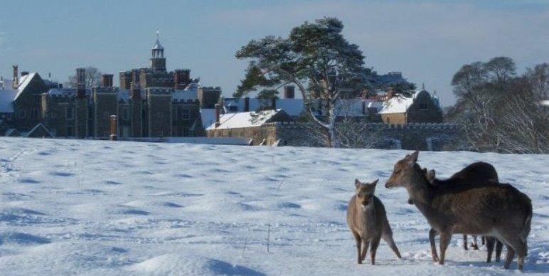 winter-scene-knole-park-sevenoaks