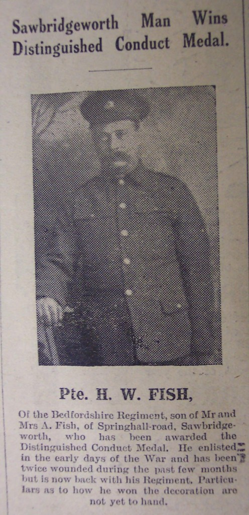 Pte H W Fish - Award of DCM - Sept 1916 - Bishops Stortford newspaper - date not known